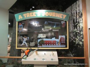 Slugger-Museum-A-Trees-Journey1
