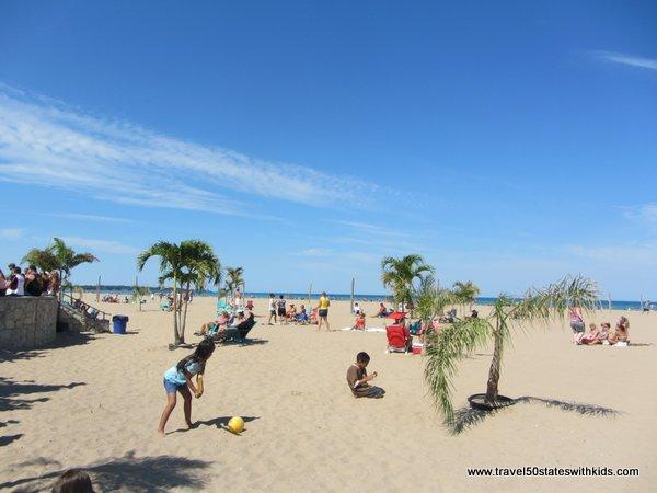 Palm Trees at North Beach Racine