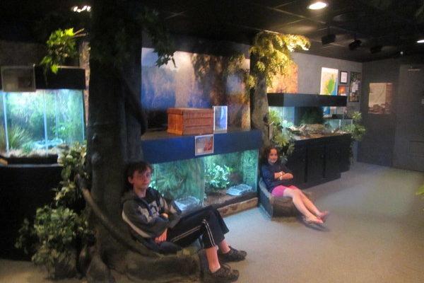 New Jersey – Jenkinson's Aquarium