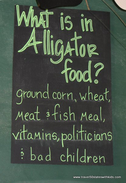 What is in alligator food