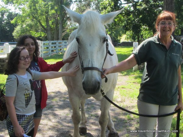 Petting a horse at Shaker Village
