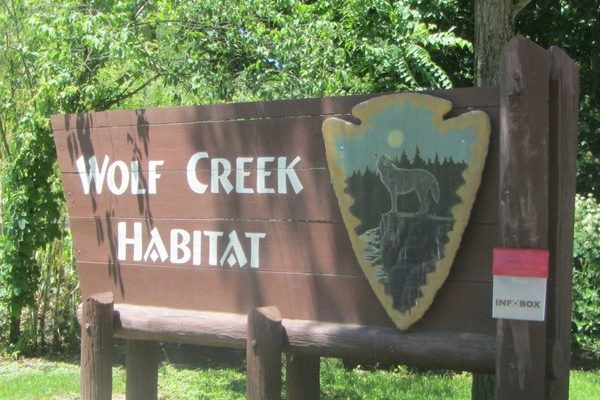 Indiana – Pet a wolf at Wolf Creek Habitat