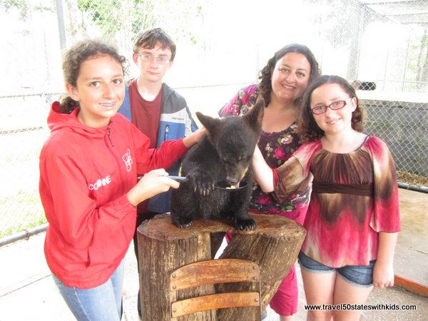 Feeding a bear cub at Oswald's Bear Ranch