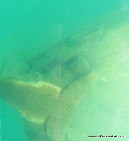 View of Shipwreck on Glass Bottom Shipwreck Tour