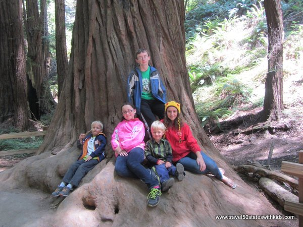 Kids at Muir Woods
