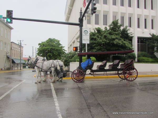 Horse-drawn carriage at Bowling Green Fountain Square