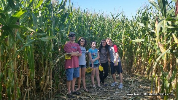 Corn Maze - Holiday World