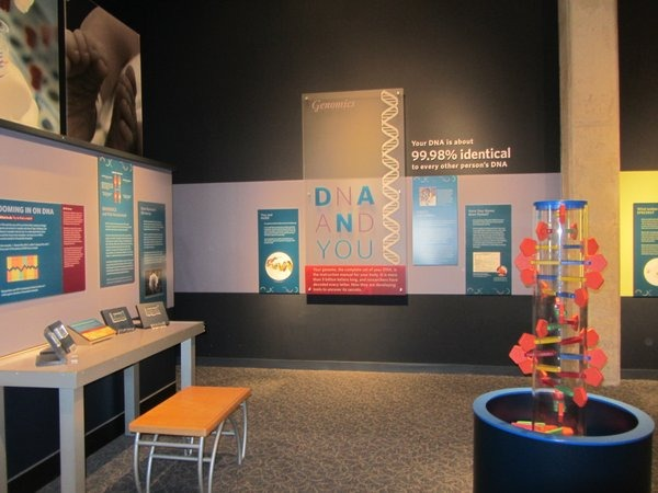 DNA exhibits at Great Lakes Science Center