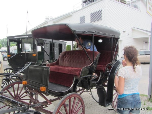 Amish buggy tour
