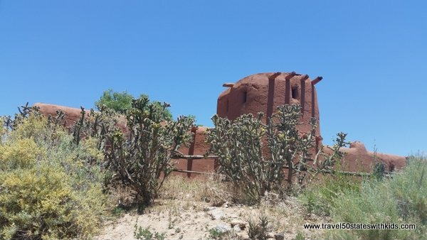 Cactus and adobe - El Rancho de las Golondrinas