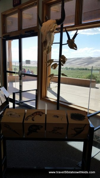 Wildlife exhibit at Great Sand Dunes National Park