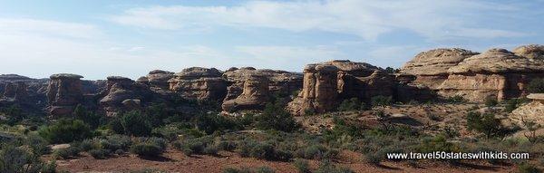 Canyonlands Mushrooms 2