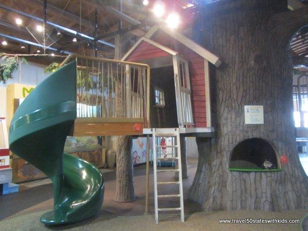 MY Museum Tree House