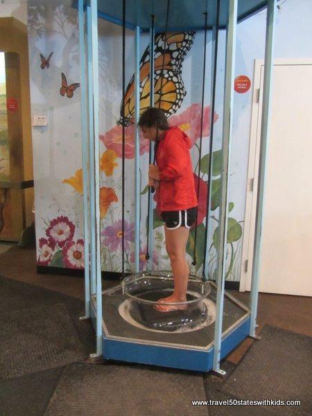 MY Museum - bubbles