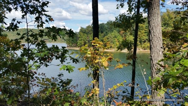 Views of Fagan Branch Lake from Cecil Gorley trail