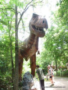 Dinosaur-Walk-at-Dinosaur-World