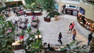 Embassy-Suites-Colorado-Springs-Atrium